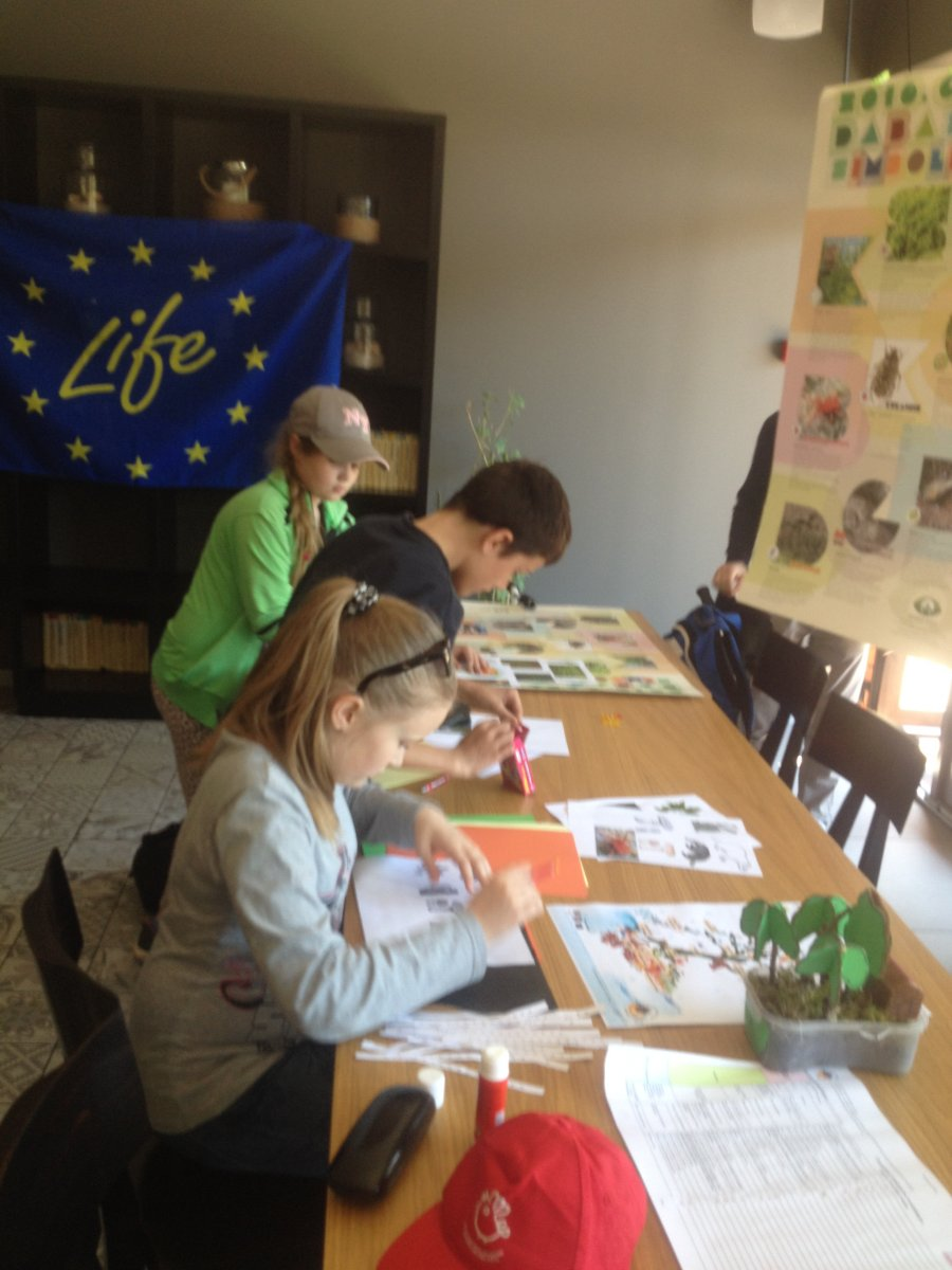 Nature education workshops about ecosystem services